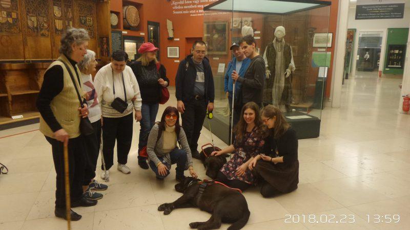 A látogatócsoport látható egy tárló előtt