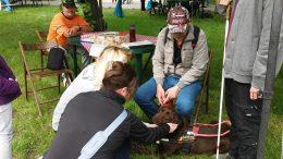 A képen az látható, amint a majálisozók Csaba kollégánkhoz mennek, megsimogatni a kutyáját