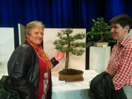A képen Terike mögött egy szép bonsai látható
