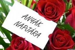 Kép forrása: www.fertopart.hu