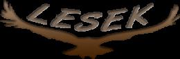 A képen a LESEK logója látható, egy kiterjesztett szárnyú sas
