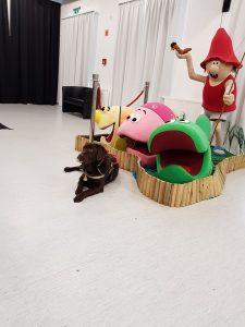 A nagy ho-ho-ho horgász életnagyságú bábúja és az egyik vakvezető kutyus