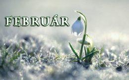 A képen egy felirat látható: február. A kép hátterében olvadó hó,, előterében pedig a hóból előbújó hóvirág