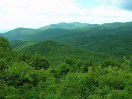 A képen a Börzyöny hegycsúcsai láthatóak nyáron, mindegyik zöldellik