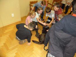 A képen kispesti iskolások simogatnak egy vakvezető kutyust