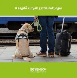 A képen egy pályaudvaron álló ember látható, mellette egy segítő kutya