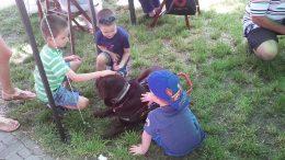 A rákosmenti majális gyereklátogatói egy vakvezető kutyust simogatnak