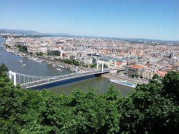A képen az Erzsébet híd látható a háttérben