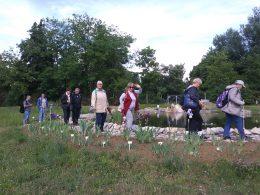 A képen az újpesti klubtagok láthatóak a botanikus kertben
