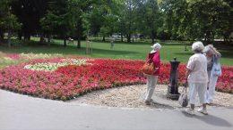 Néhány terézvárosi klubtag látható a képen, amint a virágokban gyönyörködnek a margitszigeten