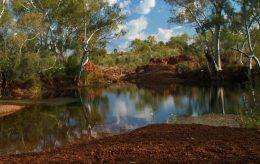 A képen egy szép erdei táj látható, kisebb folyócskával