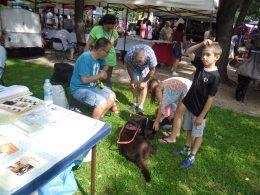 Bonca kutya és gazdája látható, amint egy család ismerkedik velük a kispesti városnapokon