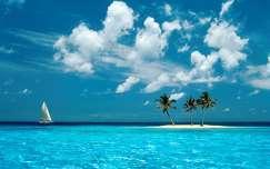 A képen egy homokos, pálmafás tengerpart látható, ami a nyárra utal