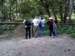 A Fátyol-vízesés előtt állnak a csoport tagjai