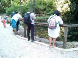 Egy sziklából előtörő forrásnál és az abból kialakított tónál állnak a csoport tagjai