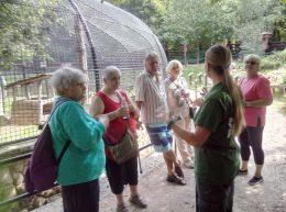 Az újpesti klubtagok egy ketrec előtt hallgatják a budakeszi vadaspark szakvezetőjét
