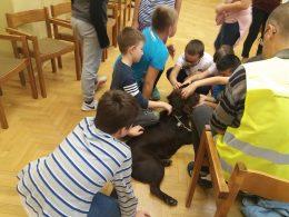 Kutyát simogatnak a diákok a kispesti érzékenyítésen