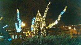 A kispesti ünnepség fényei láthatók a képen, a fák fel vannak díszítve ledekkel